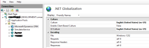 CRM Website- Net Globalization